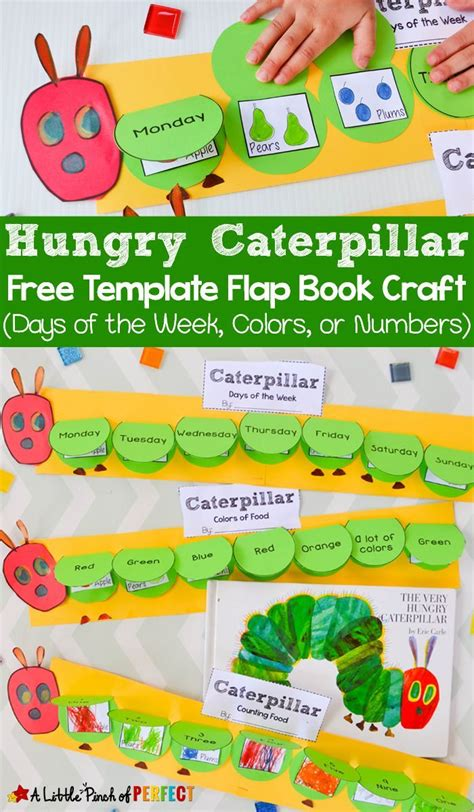 hungry caterpillar templates free hungry caterpillar flap book craft and free template 3