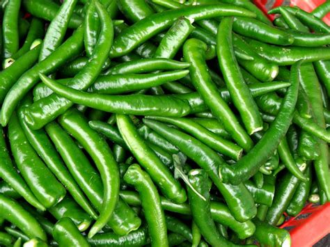 wallpaper of green chillies free stock photos rgbstock free stock images hot