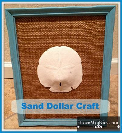 sand dollar craft projects 17 best images about seashell projects on