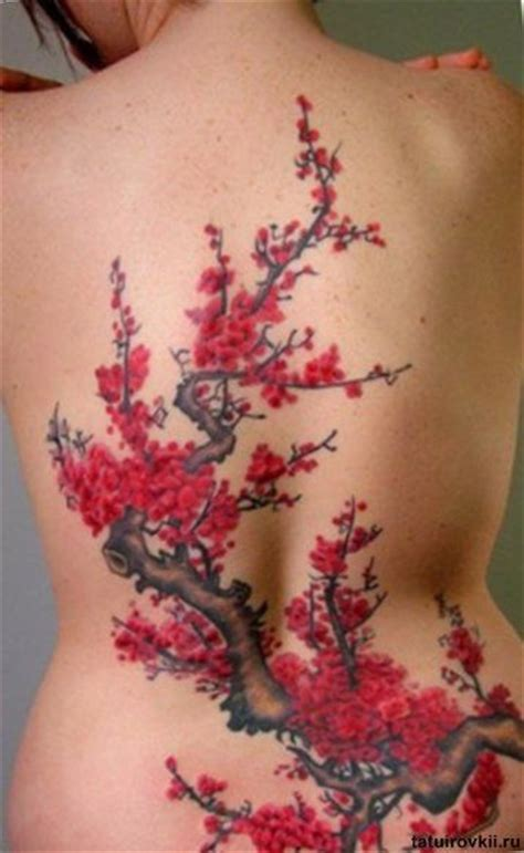 cherry blossom henna tattoo 35 best cherry blossom trees images on cherry