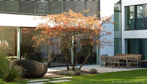 Garten Pflanzen Modern by Gartenblog Zu Gartenplanung Gartendesign Und