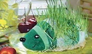 diy sock growing grass hedgehog so easy decor idea useful tutorials