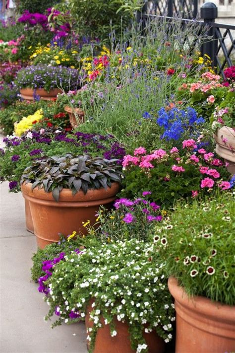 302 Best Images About Outdoor Planters Pots On Pinterest Potted Plant Garden Ideas