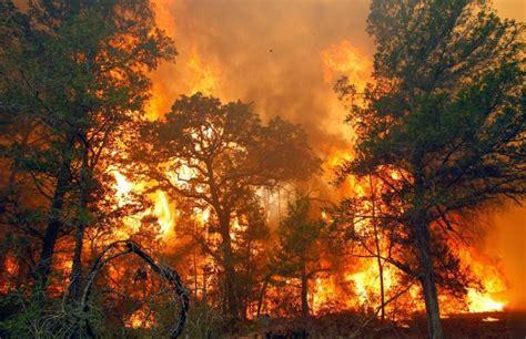 10 macam bencana alam di indonesia dan dunia beserta pengertian dan penjelasannya obatrindu