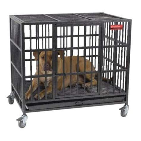 best crates for puppies best heavy duty escape proof crate