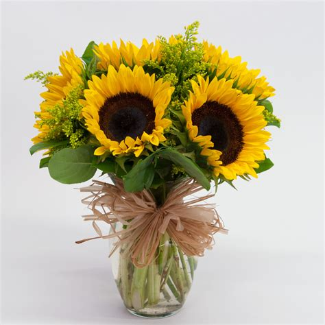 Sunflowers In Vase by Sunflower Vase Brattle Square Florist Since 1917