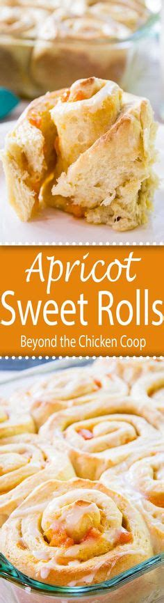 Scrumptious Sweet Rolls by 1000 Ideas About Apricot Dessert On Apricot