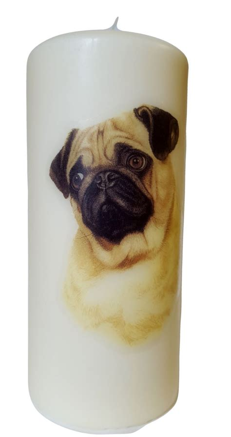 pug candles pug pillar candle large 180mm h x w 78mm 7 1 quot h x w 3 1 quot pillar candles pug and