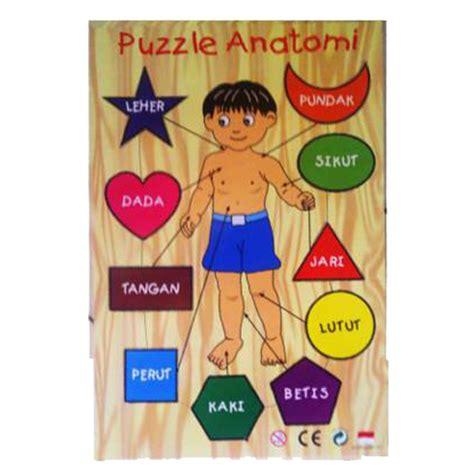 Puzzel Anatomi Tubuh asobu toys