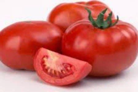 artikel membuat kurma tomat manfaat hebat dari buah tomat resep cara membuat masakan