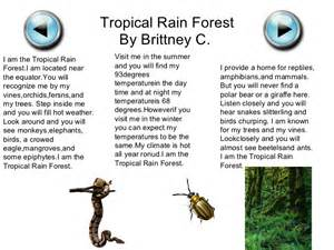 Plants In A Tropical Rainforest Biome - biome quot i quot poems by mrs corum s 5th grade class