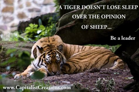 tiger quotes motivational tiger quotes quotesgram