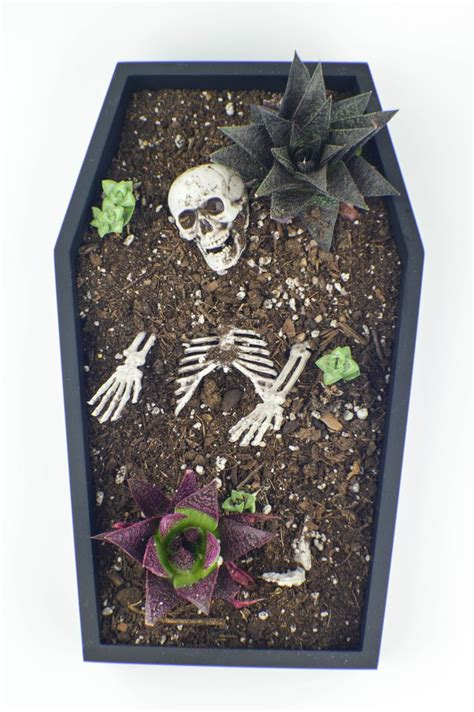 easy diy gothic gifts 17 best ideas about coffin on spooky decorations haunted house