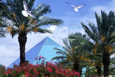 moody gardens hotel spa convention center information aquarium pyramid rainforest