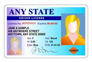 Ohio Drivers License Template by 900 X