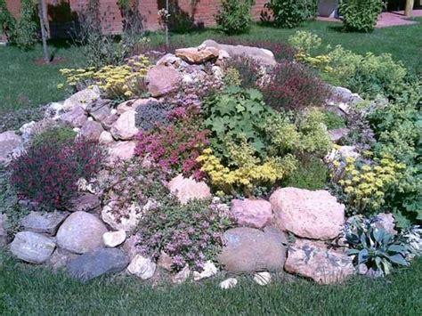 Rock Garden Design 1000 Ideas About Rockery Garden On Pinterest Rockery Stones Geraniums And Gardening