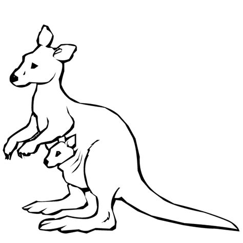 Kangaroo Coloring Page Animal Coloring Kangaroo Coloring Pages Kids