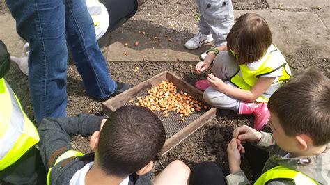 fruits n roots root n fruit community food initiative