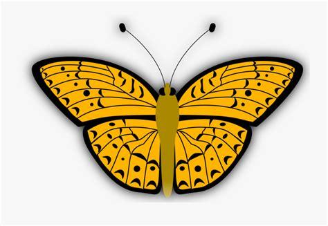 inspirasi keren sketsa gambar kupu kupu kartun hitam