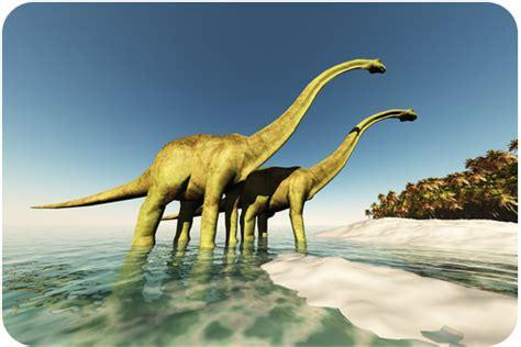 mesozoic era 5 8 mesozoic era the age of dinosaurs biology libretexts