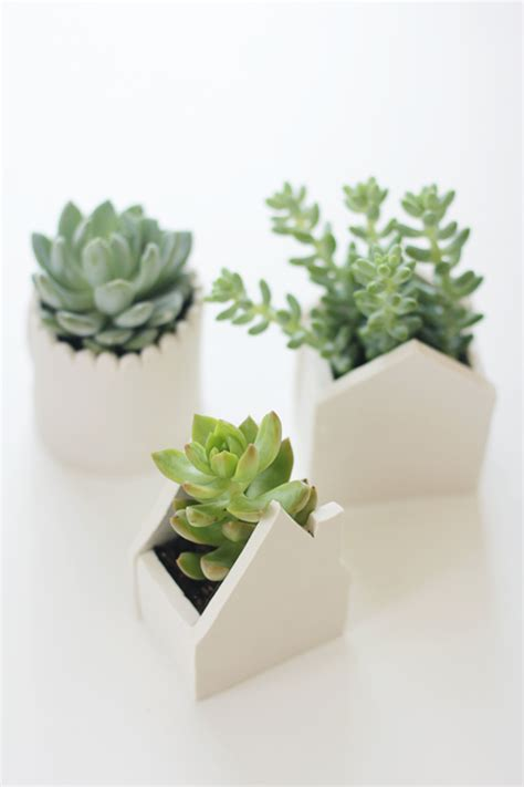 make your own little clay pots for fresh succulent plants