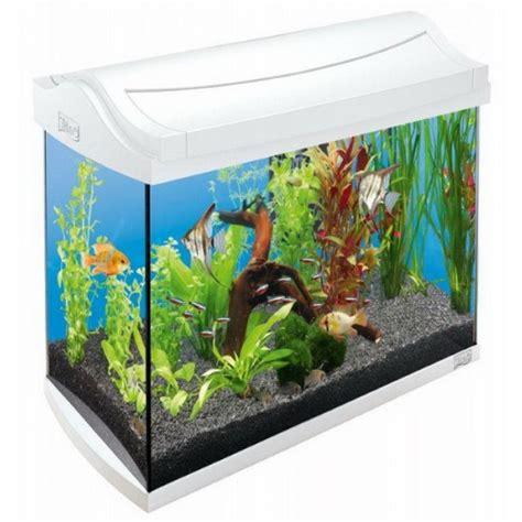 L Fish Tank by Tetra 60l Fish Tank Tetra Fish 60l Tetra Fish Tank