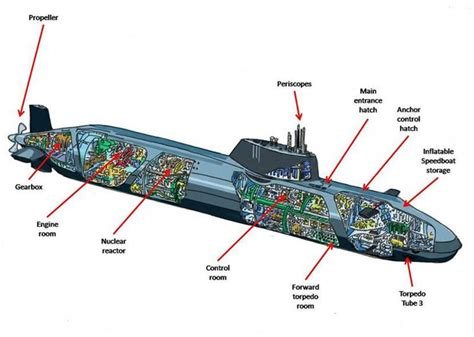 submarine sections pin cross section illustration showing internal anatomy of
