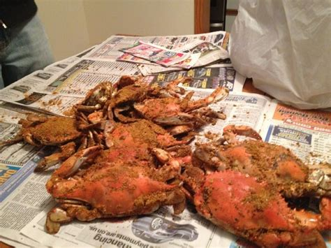 crab house maryland salty dog s crab house in dundalk md dundalk maryland pinterest dogs
