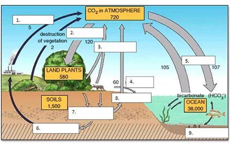 carbon cycle diagram worksheet carbon cycle worksheet free worksheets library
