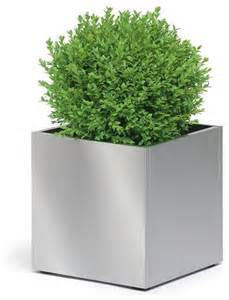 greens stainless steel medium planter contemporary