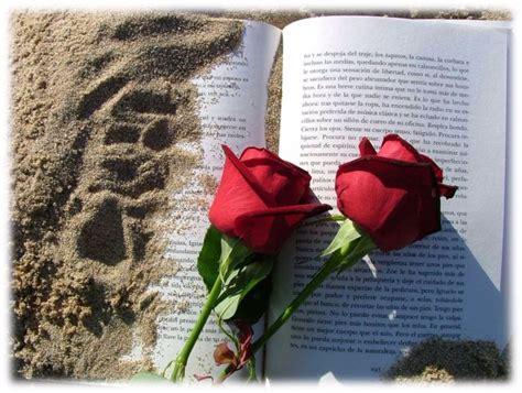 libro rosa de cendra rosas libros y enamorados la fiesta de san jordi en barcelona buena vibra