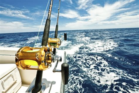 deep sea fishing boat cost gold coast fishing charters deep sea fishing