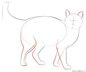 how to draw cat how to draw a realistic cat step by step drawing tutorials