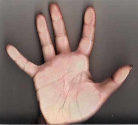 la mano sulla chirologia la mano sinistra chirologia la mano parla