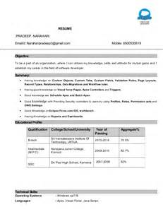 salesforce developer resume sles salesforce certified developer resume essaysbank x fc2