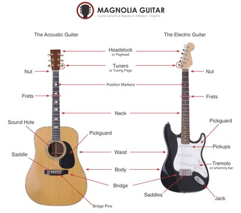 the parts of a guitar magnolia guitar