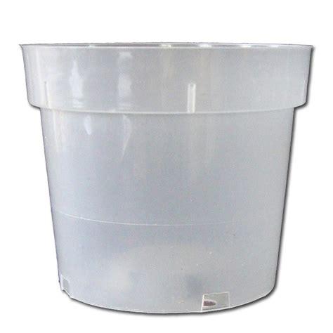 Clear Planter Pots by 6 Quot Rigid Clear Plastic Pot Taller