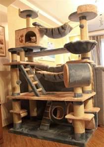 pour le chat domestique a aussi besoin de logement