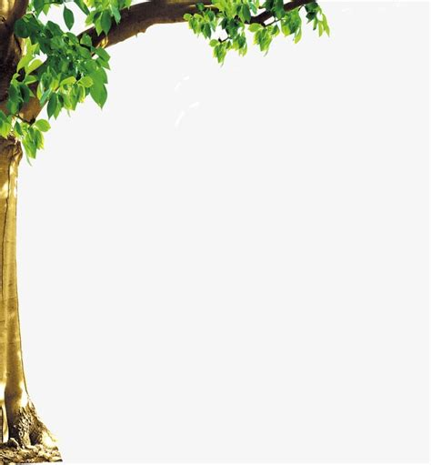 Tree Clip Border trees border trees frame trees clipart png image and
