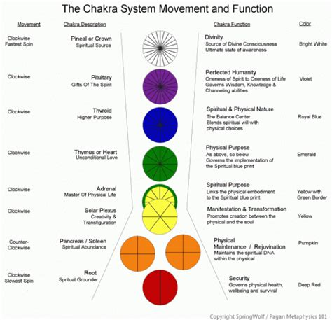 chakra color meanings the chakra system springwolf reflections