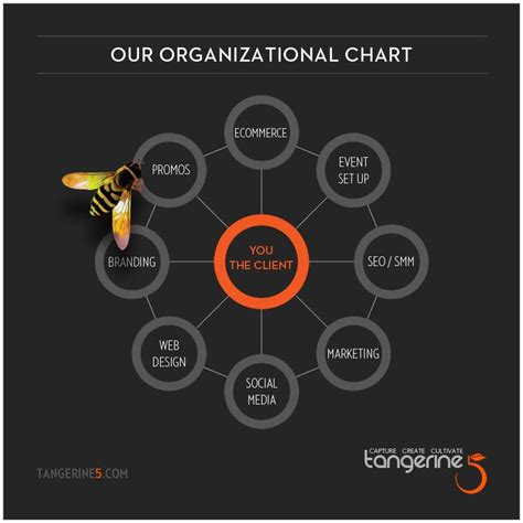14 Best Org Chart Ideas Images On Pinterest Graphics Org Chart Design Ideas