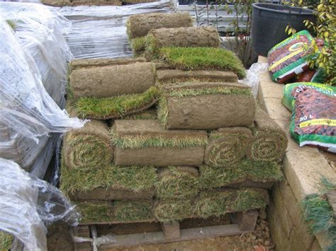 tappeto erboso a rotoli tappeto erboso a rotoli paesaggi garden vivaiopaesaggi