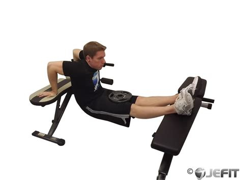 dips off bench weighted bench dip exercise database jefit best