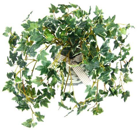 k nstliche zimmerpflanzen k 252 nstliche zimmerpflanzen kaufen otto