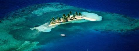 seaduced catamaran belize welcome to seaduced by belize where all your tour
