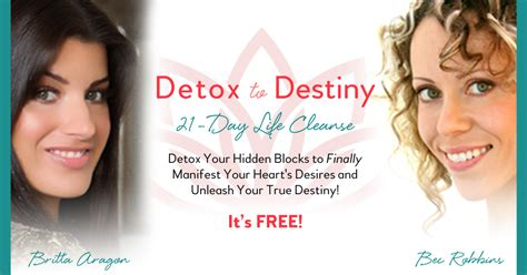 Detox To Destiny by Detox To Destiny Free 21 Day Cleanse Detox To