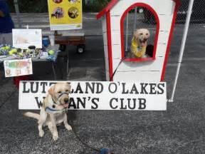 bow wow benefit dogfest walknroll september