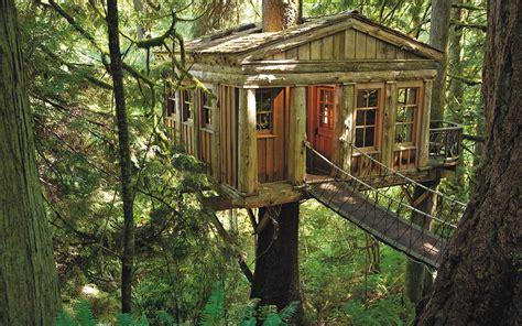 how to build a treehouse basics mountain home