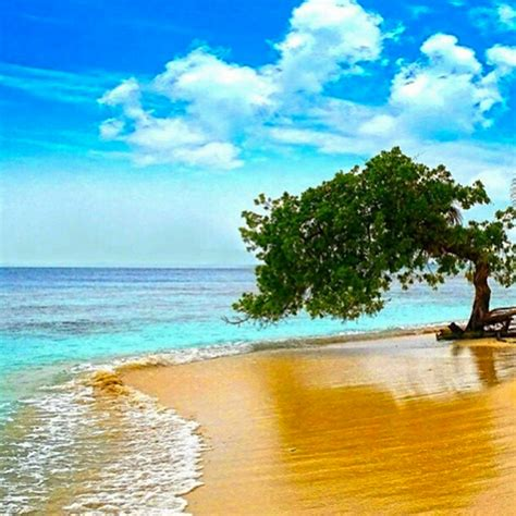 imagenes de venezuela playas estas son las im 225 genes m 225 s destacadas que nos deja este