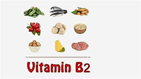 Vitamin Growee list of foods high in vitamin b complex you should